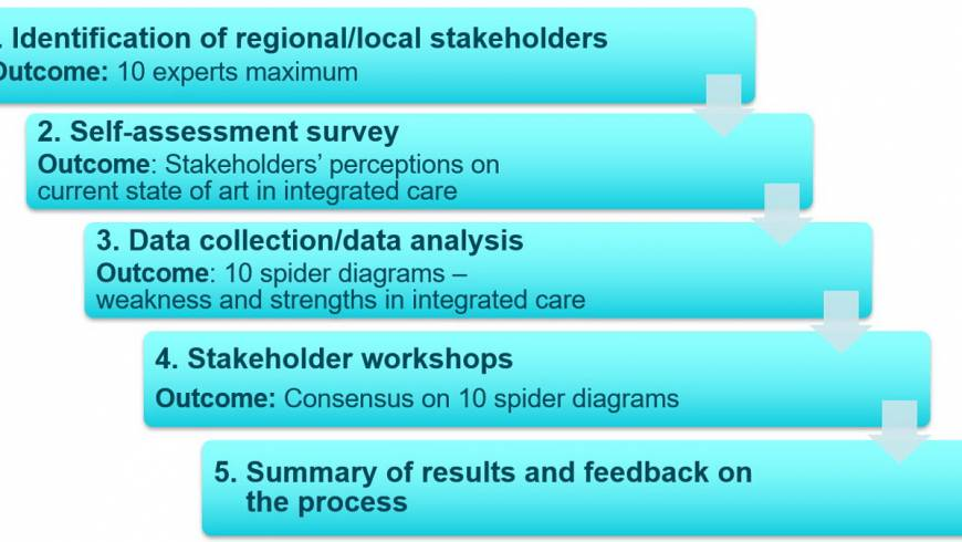 Ready for adoption and scaling-up of integrated care? Try the SCIROCCO Self-assessment Process